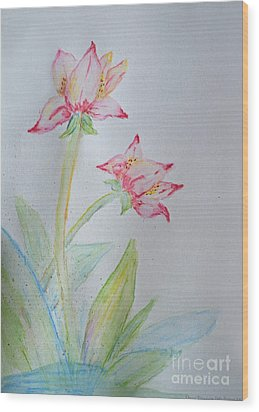 Tulip Duo I  Wood Print by Debbie Portwood