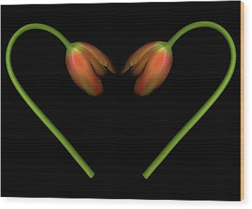 Tulips In Shape Of Heart Wood Print by Marlene Ford