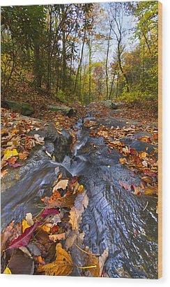 Tumbling Leaves Wood Print by Debra and Dave Vanderlaan