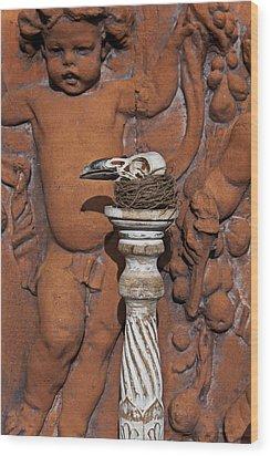 Turkey Vulture Skull Wood Print