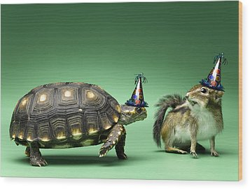 Turtle And Chipmunk Wearing Party Hats Wood Print by Jeffrey Hamilton