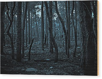 Wood Print featuring the photograph Twilight In The Smouldering Forest by DigiArt Diaries by Vicky B Fuller