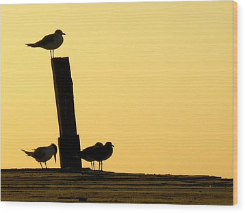 Twilight Silhouettes Wood Print by Artisan de l Image