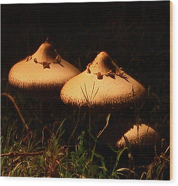 Twins Wood Print by Karen Harrison