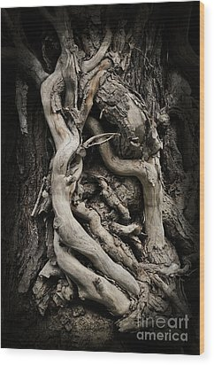 Twisted Dreams Wood Print by Mary Machare