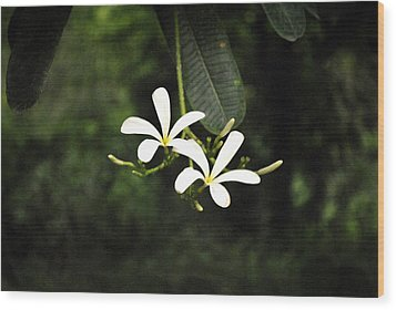 Two Flowers Wood Print by Sumit Mehndiratta