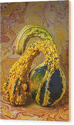 Two Gourds Wood Print by Garry Gay