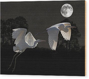 Two Great Egrets  Wood Print by Eric Kempson