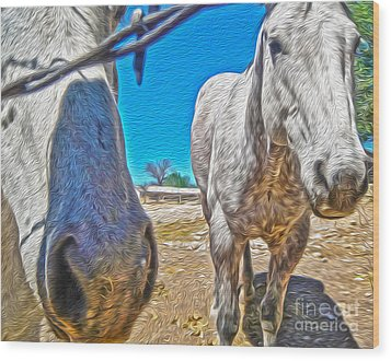 Two Horses Wood Print by Gregory Dyer