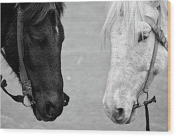Two Horses Wood Print by Sayantan Mitra