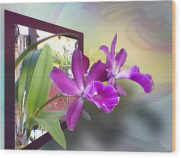 Wood Print featuring the digital art Two Orchids by Ginny Schmidt