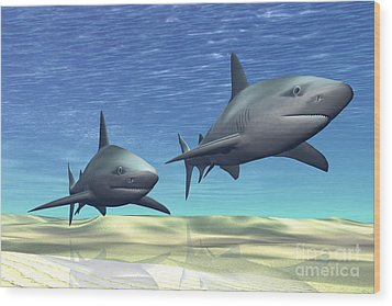 Two Sharks On Patrol Over A Sandy Reef Wood Print by Corey Ford