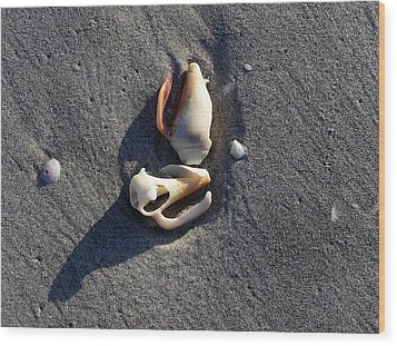 Two Shells On The Beach Wood Print