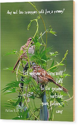 Two Sparrows For A Penny Wood Print by Paula Tohline Calhoun