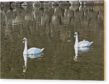 Two Swan Floating On A Pond  Wood Print by U Schade