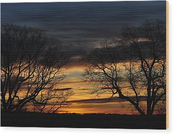 Two Tree Sunrise Wood Print by Peter  McIntosh