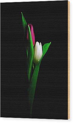 Two Tulips  Wood Print by Elsa Marie Santoro