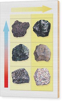 Types Of Volcanic Rock Wood Print by Gary Hincks