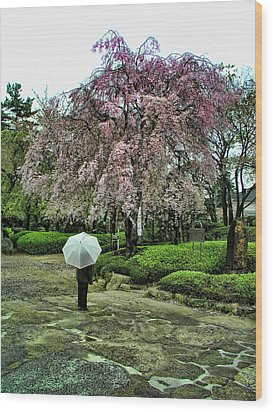 Umbrella With Cherry Blossoms Wood Print