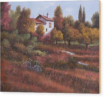 Una Bicicletta Nel Bosco Wood Print by Guido Borelli
