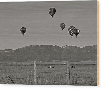 Wood Print featuring the photograph Unconcerned Lamas by Eric Tressler