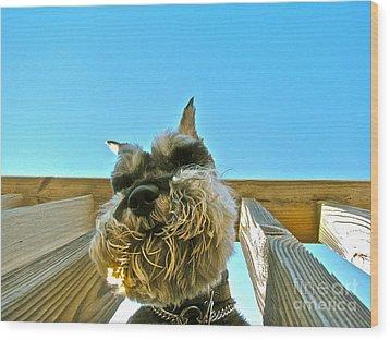 Under Dog Wood Print by Arthur Hofer