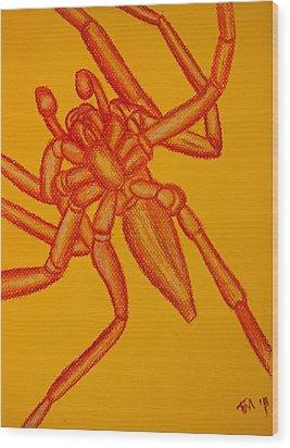 Underbelly Wood Print by Thomas Maynard
