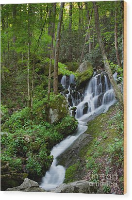 Unnamed Falls At Tremont Nc Wood Print by E Mac MacKay