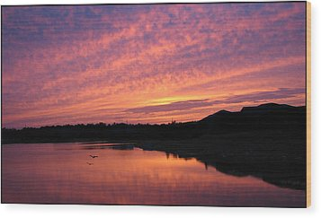 Wood Print featuring the photograph Untitled Sunset-6 by Bill Lucas