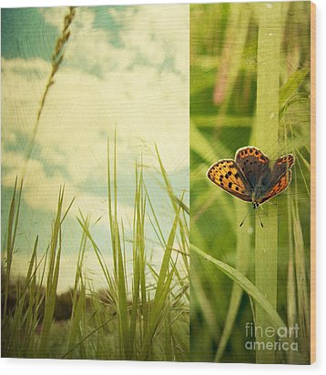 Unveil Wood Print by Violet Gray