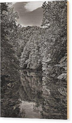 Up The Lazy River Monochrome Wood Print by Steve Harrington