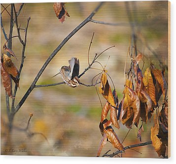 Up Up And Away - Sparrow Wood Print by J Larry Walker