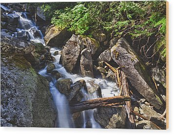 Upper Cascades Of Malchite Creek Wood Print by A A