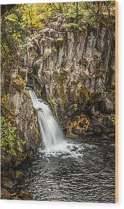 Wood Print featuring the photograph Upper Falls Mccloud River by Randy Wood