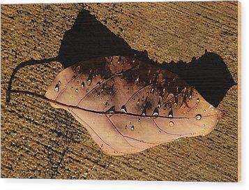 Upsidedown Brown Wood Print by Joe Schofield