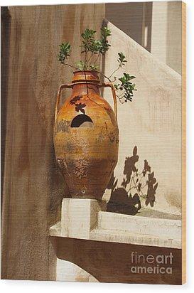 Urna D'italia Wood Print by Joyce Hutchinson