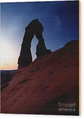 Utah - Delicate Arch 3 Wood Print by Terry Elniski