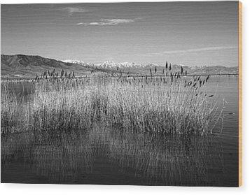 Utah Lake And Wasatch Mountains Wood Print by Tracie Kaska