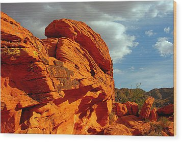 Valley Of Fire - Born To Be Wild Wood Print by Christine Till