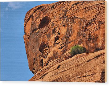 Valley Of Fire Nevada - A Special Place Wood Print by Christine Till