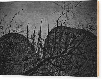 Valley Of Sticks Wood Print by Empty Wall