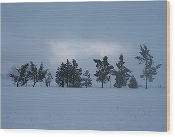 Wood Print featuring the photograph Valley Sentinels by Holly Ethan