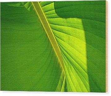 Veins Of Green Wood Print by Nick Kloepping