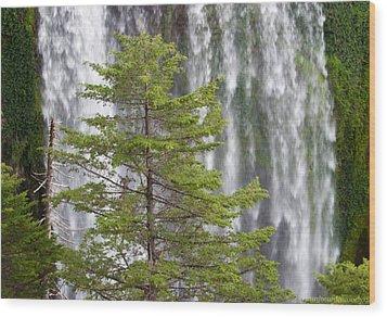 Vencedores Waterfall Wood Print by Ricardo Cardenas
