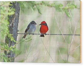 Vermilion Flycatcher In Love Wood Print by Edith Polverini