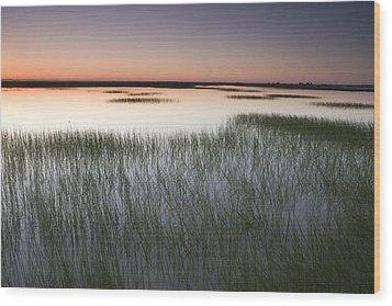Vernal Pool At Sunrise Jepson Prairie Wood Print by Sebastian Kennerknecht
