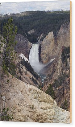 Wood Print featuring the photograph Vertical Lower Falls Of Yellowstone by Living Color Photography Lorraine Lynch