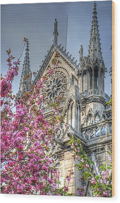 Wood Print featuring the photograph Vibrant Cathedral by Jennifer Ancker