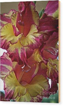Vibrant Gladiolus Wood Print by Susan Herber