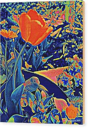 Vibrating Spring Wood Print
